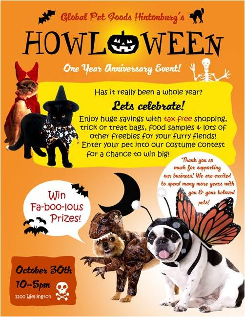 dont miss a halloween party for pets in ottawa gracies bark pet friendly resource - Pet Halloween Photo Contest