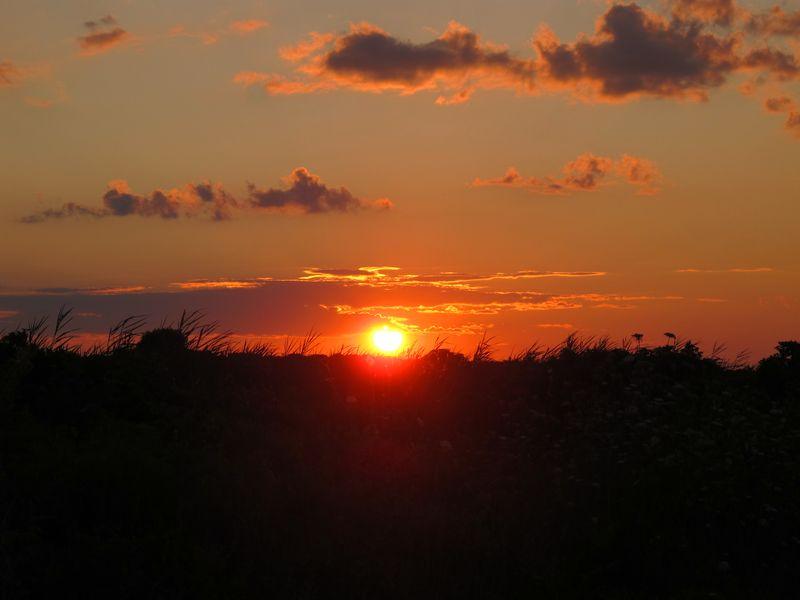 Gooseberry Island Sunset